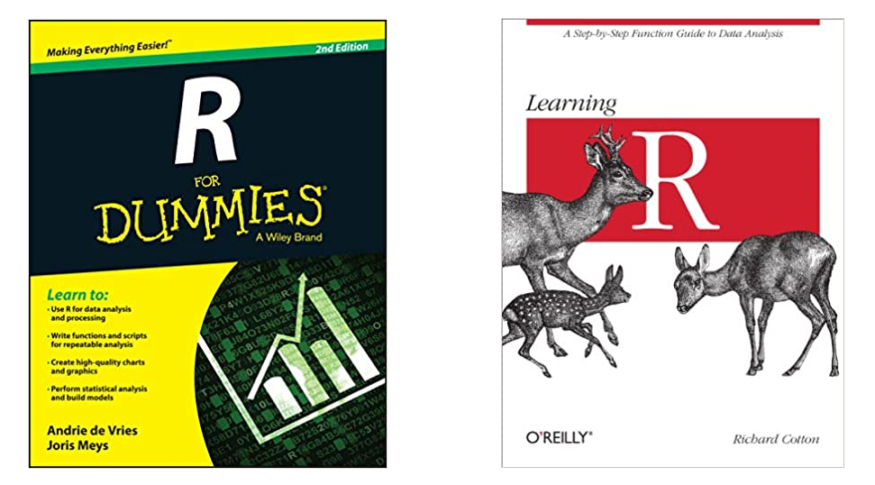 r programming books